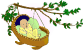 Tree Top 100 Baby Names